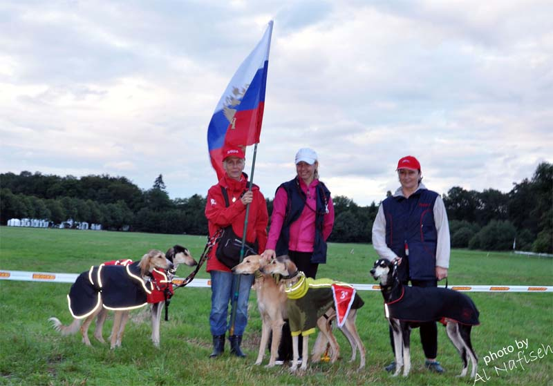 Russian Saluki team